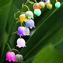 PLAT FIRM Maiglöckchen Blumensamen, Glocke