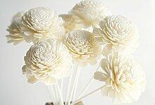 Plawanature Duftblumen, exotisches Set mit 10Blumen, Jasmin Design, 5,1cm, Sola Holz, mit Diffusor für Aroma-Öl