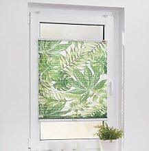 Plissee Blätter Blickdicht Sansibar Home