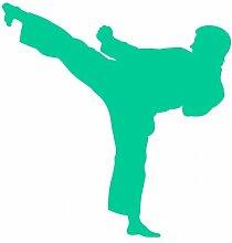 plot4u Aufkleber Karate Autosticker Karatekämpfer in 8 Größen und 25 Farben (49x50cm türkis)