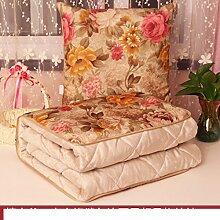 Plüsch Kissen quilt Dual-Kissen/ große gepolsterte Büro NAP Decke/ Auto Lenden Kissen Sofa-A 45x45cm(18x18inch)