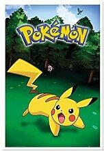 Pokemon Pikachu Catch Poster Kork Pinnwand