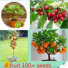 Portal Cool 100 Samen 4 Art Obst,