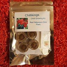 Portal Cool Red Habanero Chili, Chili-Growkit! 6,