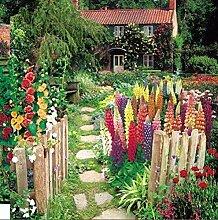 Portal Cool Suttons Seeds Cottage Garten-Sammlung
