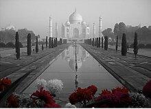 Poster Around the World Taj Mahal, Fotodruck in