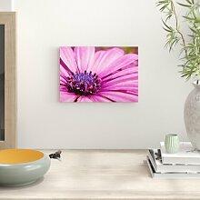 Poster Flower, Fotodruck Big Box Art