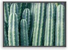 Poster Kaktusfoto Blim and Blum Format: Kein