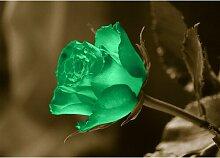 Poster Lifestyle Rose, Fotodruck East Urban Home
