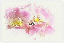 Poster Pink Orchid Flower, Grafikdruck Big Box Art