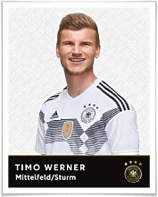 Poster - Poster - DFB - Timo Werner