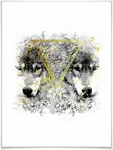 Poster - Poster Wölfe