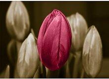 Poster Tulip, Grafikdruck in Braun East Urban Home