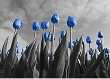 Poster Tulips, Fotodruck East Urban Home Größe: