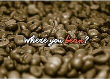 Poster Where You Bean, Grafikdruck in Braun East