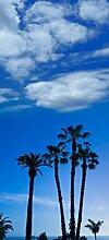 posterdepot Türtapete Türposter Palmen vor blauem Himmel- Kalifornien USA - Größe 93 x 205 cm, 1 Stück, ktt0591