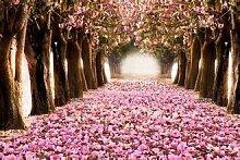 Potseed 10 rosa Kirschblüten Sakura Garten-Blumen