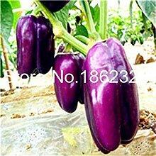 Potseed . 200 Stück Paprika-Pfeffer-Gemüse