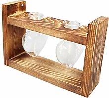 PPLAX Holzrahmen Glas Vase Hydroponische Pflanze