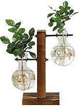 PPLAX Terrariumhydroponische Pflanze Vasen Vintage