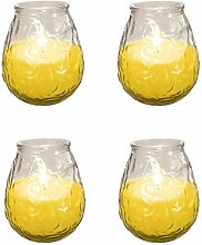 Preisen Outdoor Citronella Kerze in Glas Fliegen
