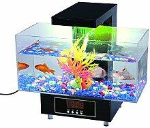 Premier Desktop-Aquarium von Express Panda® (Complete-Geschenk-Set für Büro oder zu Hause)