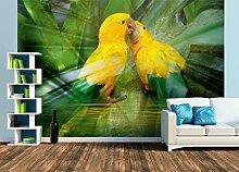 Premium Foto-Tapete Amazonen Papagei (verschiedene