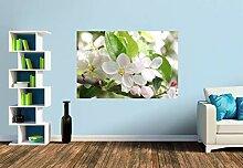 Premium Foto-Tapete Apfelblüten (versch.