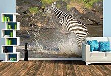 Premium Foto-Tapete Das Zebra rettet sich nach