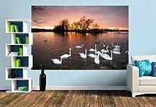 Premium Foto-Tapete Ein Motiv aus dem Kalender Mit