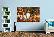 Premium Foto-Tapete Ein Motiv aus dem Kalender Wir