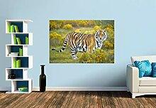 Premium Foto-Tapete Imposanter Königstiger steht