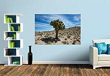 Premium Foto-Tapete Joshua Tree (versch. Größen)