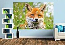 Premium Foto-Tapete Portrait eines wachsamen