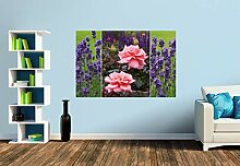 Premium Foto-Tapete Rosen und Lavendel