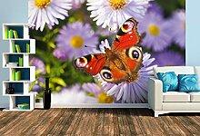 Premium Foto-Tapete Schmetterling (verschiedene
