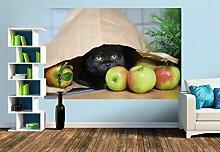 Premium Foto-Tapete Verstecktes Kätzchen