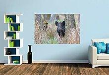 Premium Foto-Tapete Wildschwein in heimischer