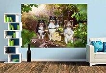 Premium Foto-Tapete Wir lieben Sommer