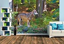 Premium Foto-Tapete Wolf im Tierfreigelände