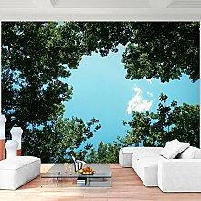 Premium Fototapete Baumkrone 396 x 280 cm - 9