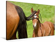 Premium Textil-Leinwand 90 cm x 60 cm quer,