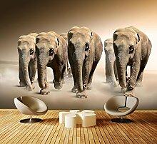 Premium Vliestapete Elefantengruppe Afrika