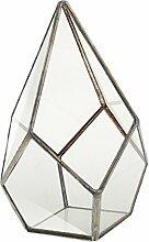 Prettyia Messing Glas Terrarium Sukkulente