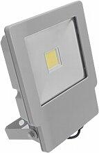 prilux Green LED–Projektor Energy Neo led-vi 50W 830IP657040