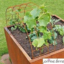prima terra Rankhilfe Edelrost, Pflanzenranke, Rankgitter, Rankbogen für Hochbeetbreite von 72cm bis 75cm, Rankhilfenbreite 30 cm