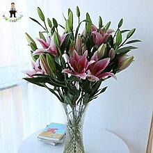 prime vista 150 samen/pack Schöne Lilium Blume
