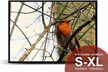 Printalio - Redbeard Bird - Schmutzmatte