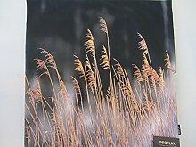 Proflax Kissenhülle Digitaldruck mit Gräsern