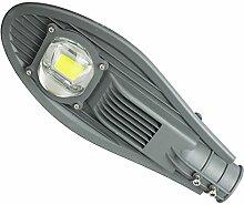 Pueri 30W LED Straßenlampe Straßenleuchte Außenleuchte Gartenlampe Mastleuchte Lampe Hofbeleuchtung Laterne Wasserdicht IP65 (30W Kaltweiß)